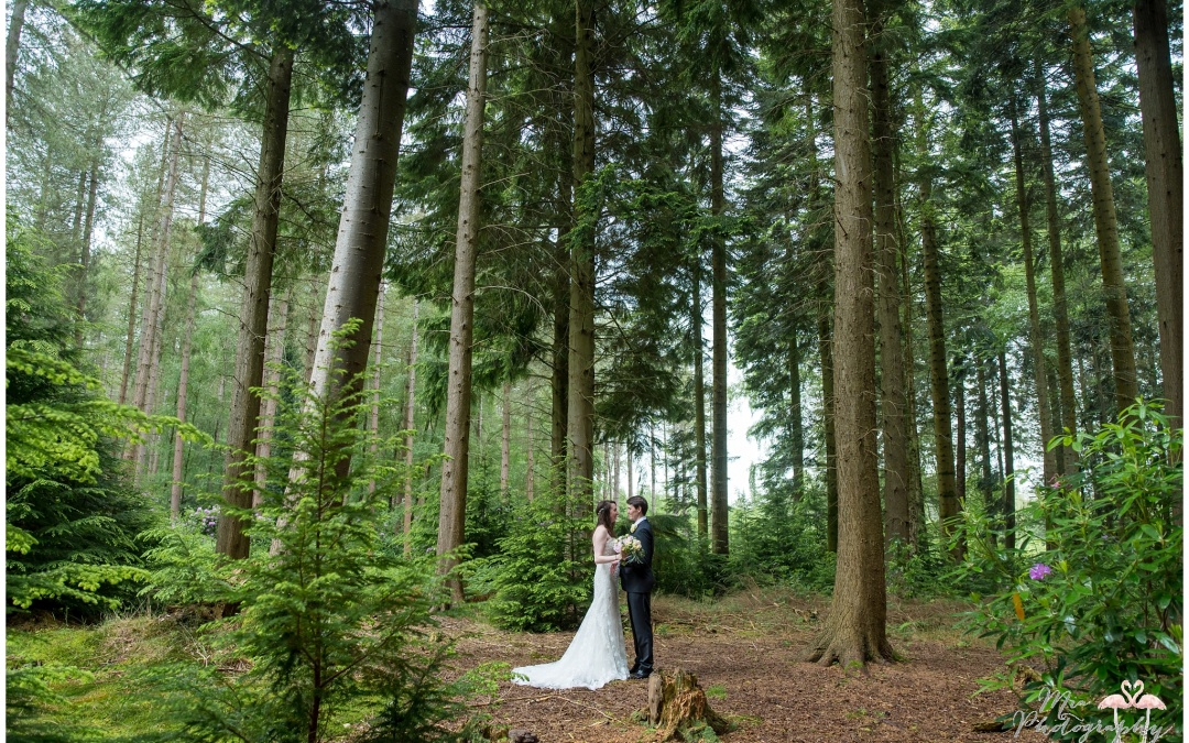 Weddings in the Woods, The New Forest – Gemma & Mark