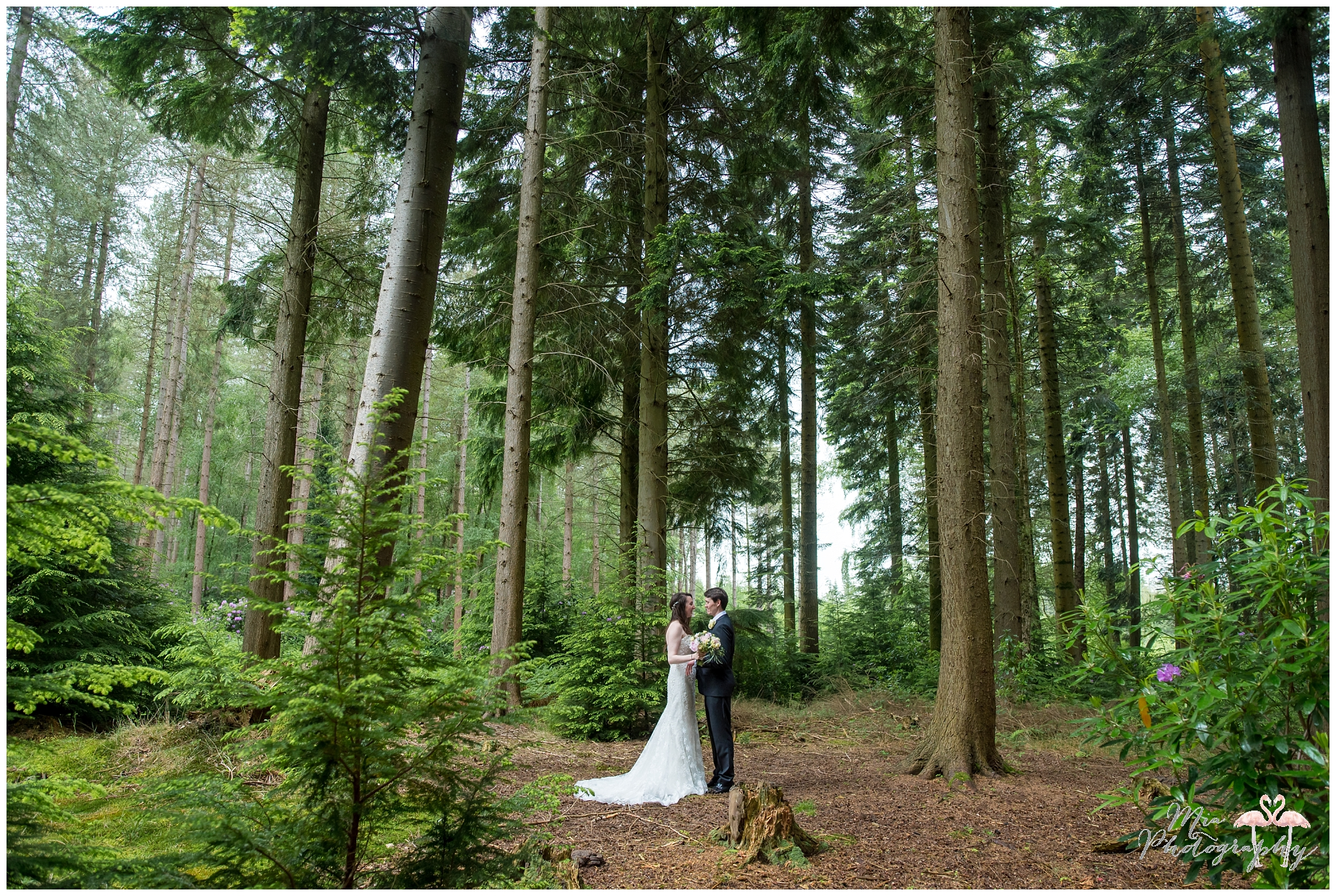Weddings in the Woods in The New Forest