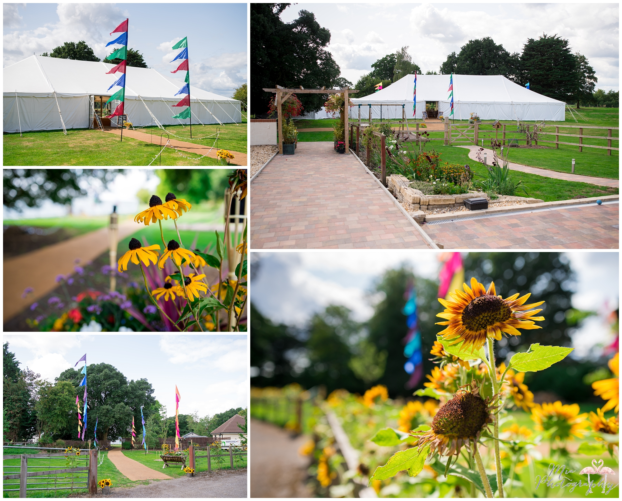 Garden marquee sunflower wedding